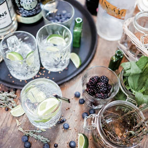 Gin Masterclasses